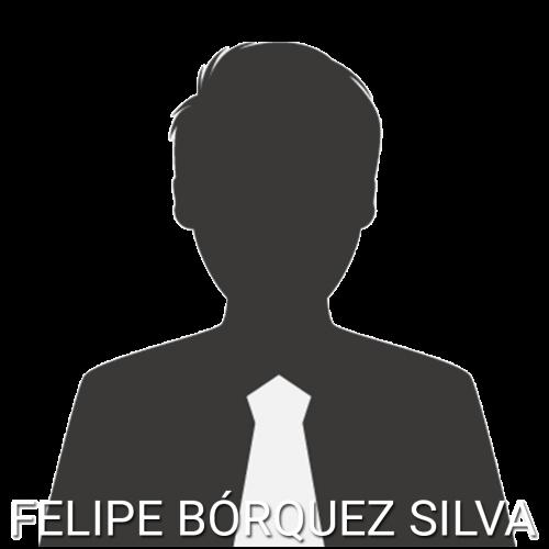 felipeBorquez